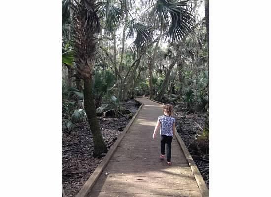 Oak Hammock Trail