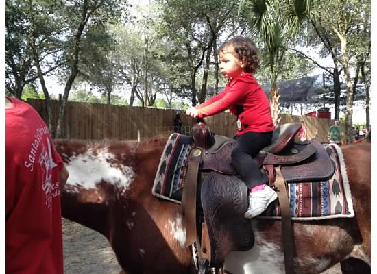 2013 horse ride