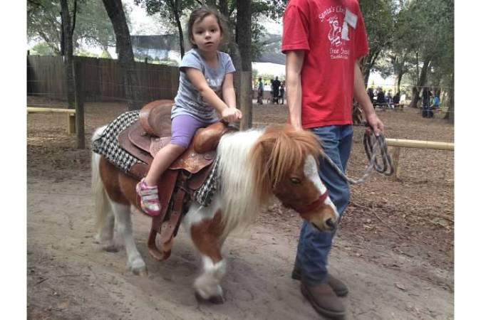 2014 pony ride