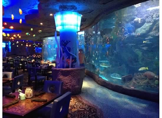 aquariumrest